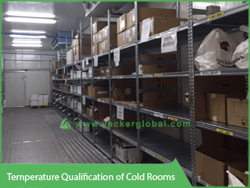 Temperature Qualification of Cold Rooms - Vacker UAE